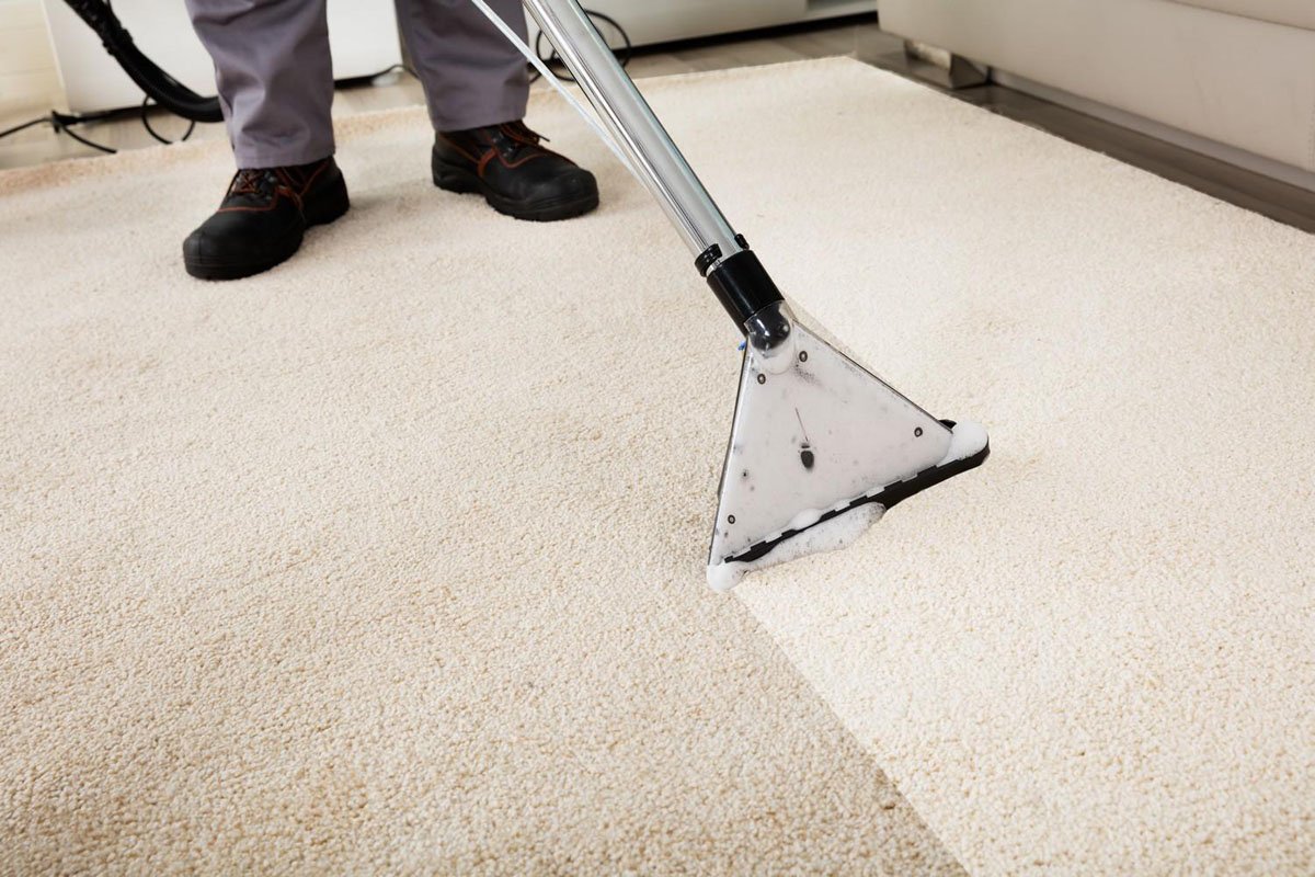 Top Models for Carpet Steam Cleaners