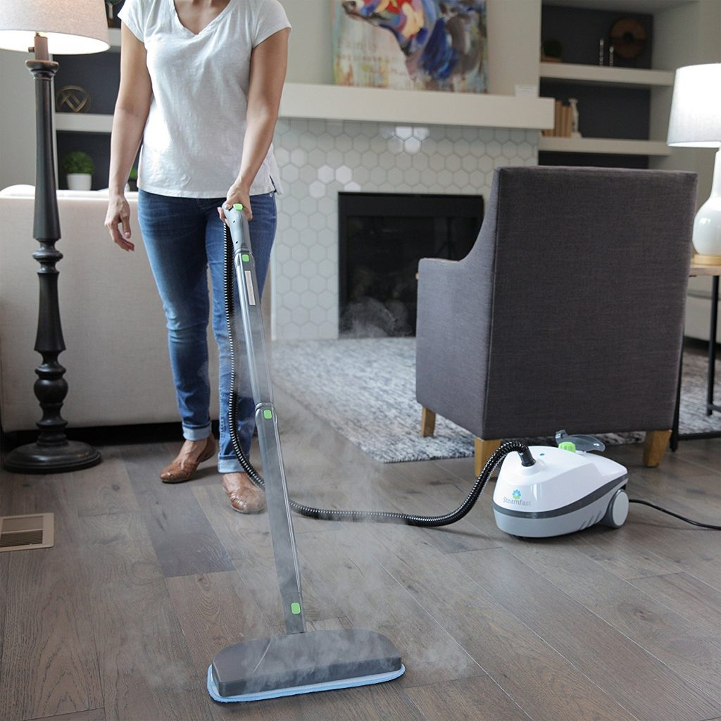 Steamfast SF-320 Portable Steam Cleaner Review